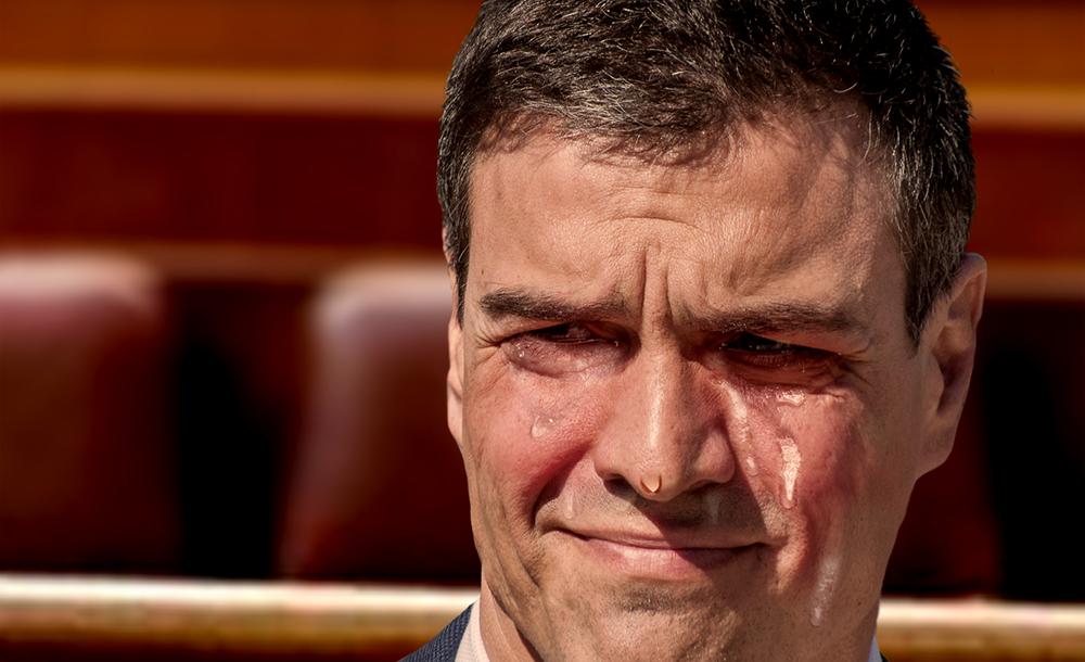 Resultado de imagen de Pedro Sánchez Llorando