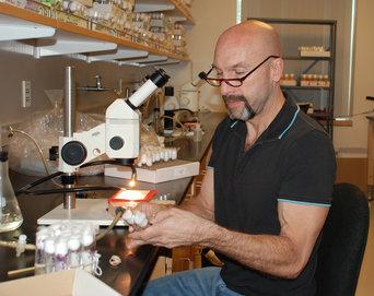 Un Científico Convence A Varias Moscas Para Que No Vayan A