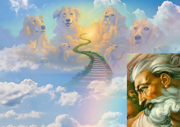 Dios No Encuentra A Nadie Que Pueda Ocuparse Del Cielo De