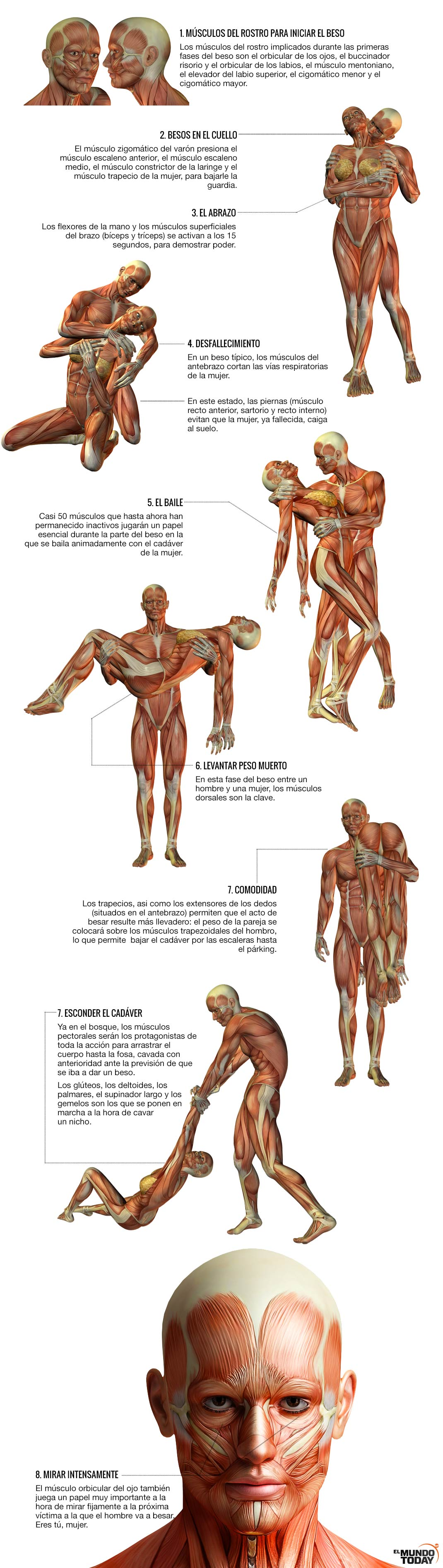 Cuántos Músculos Utilizamos Para Dar Un Beso El Mundo Today