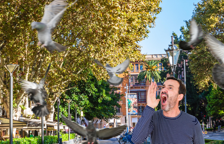 www.elmundotoday.com